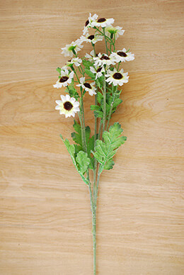 12 White Mini Sunflower Sprays