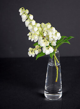 Mini Fluted Vase 4in (Set of 6)