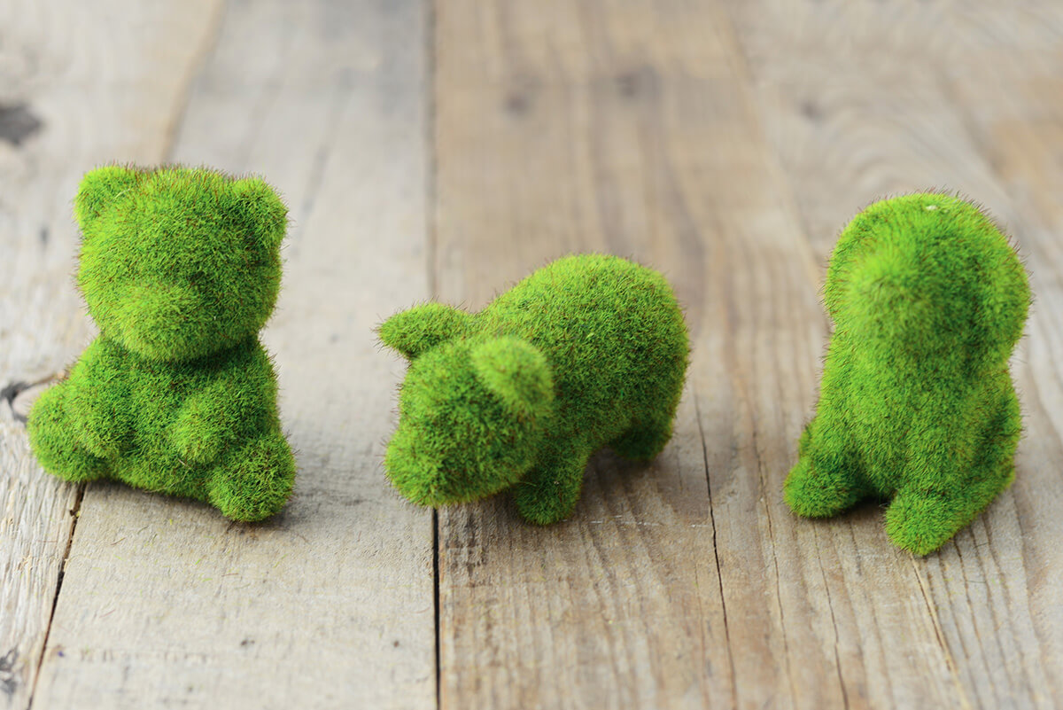 Moss Animals Set Of 6