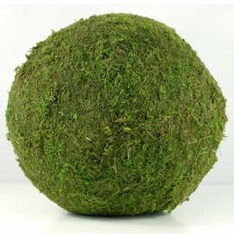 Moss Ball 8in
