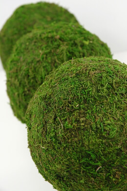 Decorative Balls, Moss Balls