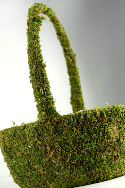 Moss Basket 13in