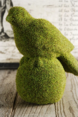 Moss Covered Bird