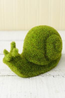 Moss Snail 6.75in
