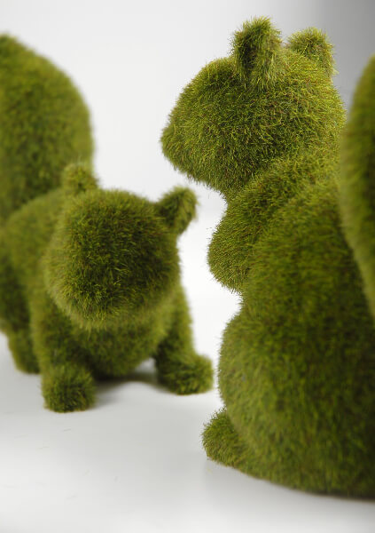 Moss Covered Squirrels | Set of 2