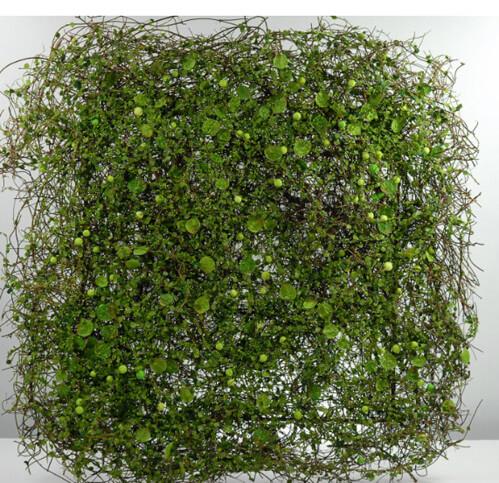 "Moss, Duckweed Mat 18"" Square"