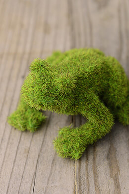 Moss Frog 2.5 x 4.25 x 4in