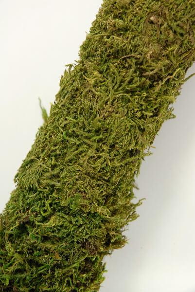 "Moss Poles 24"""