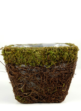 Natural Moss & Wicker Pot 4.75 Square