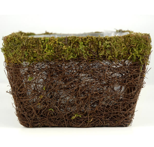 Wicker and Moss Planter 7.5in