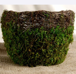 Wicker and Moss Pot with Liner 7in