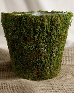 Moss Pot with liner 6-3/4""