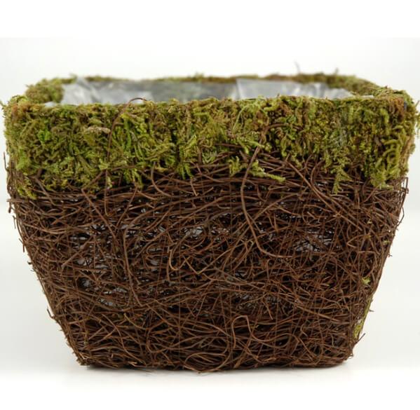 Moss Amp Wicker Planter 6in