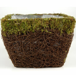 Moss & Wicker Planter 6in