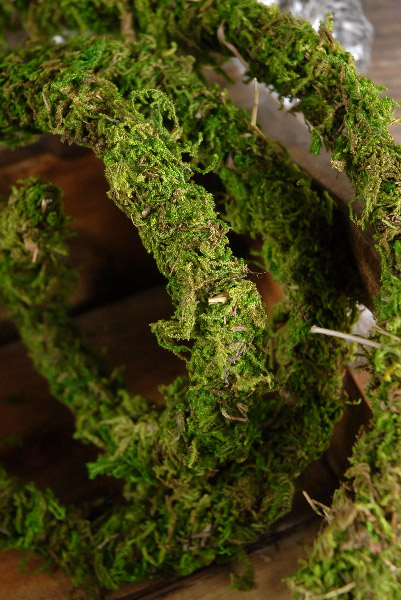Moss Covered Wire, Preserved Vine 6 ft