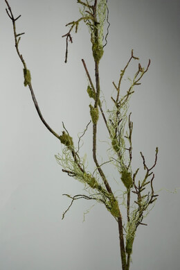Mossy Branch Artificial 55in