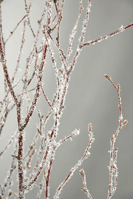 Natural Birch Branches with Glitter & Snow 3-4' tall (5 branches)