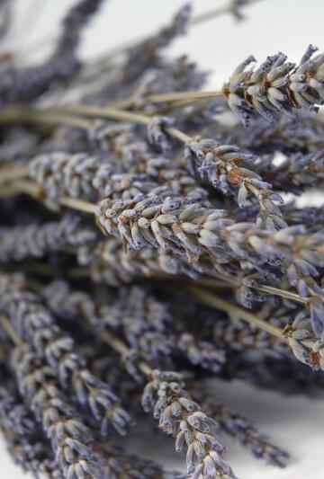 Natural Lavender Buds Stems Fragrant 120 stems