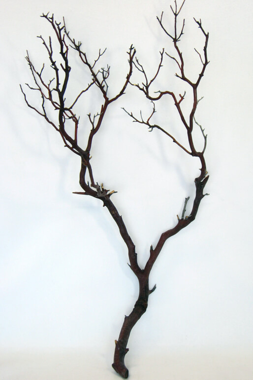 Dark Reddish Brown Manzanita Branch 24 38in