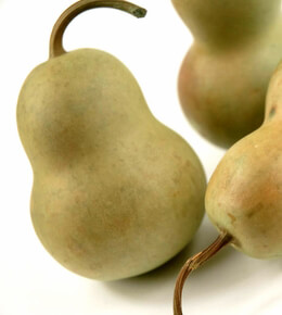 Natural Preserved Basil Pear Gourds