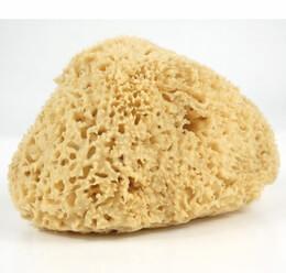 "Natural Sponges 6"" Mediterranean Sponge"