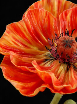 Poppy Flower Orange & Yellow Artificial