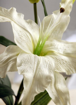 Artificial Lily White