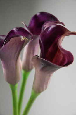 Artificial Calla Lily Purple 25in