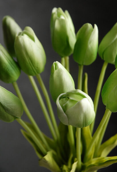 Real Touch Silk Flower Mini Green Tulip Bouquet 14