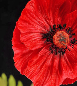 Poppy Flower Red Artificial