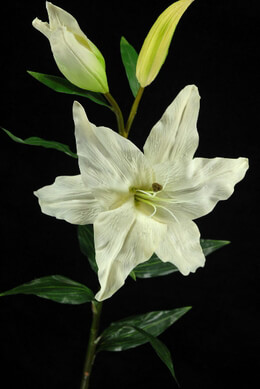 Natural Touch White Casablanca Lily Flowers