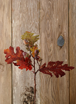 Oak Leaf Spray with Acorns 16in