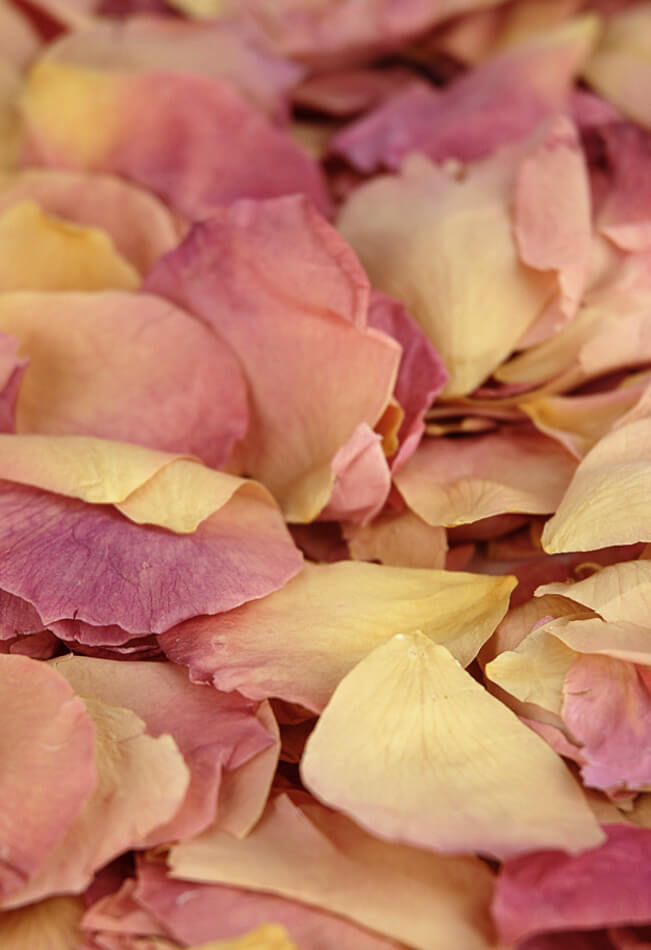 Soft Freeze Dried Living Easy Blend Rose Petals   (5 cups)