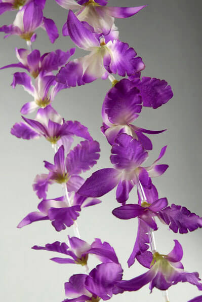 12 Orchid Flower Leis Purple & White
