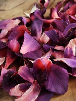 Orchid Petals Preserved Aurora Jewel
