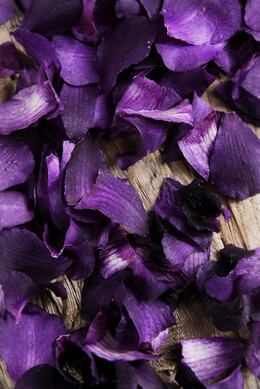 Orchid Petals Purple Preserved