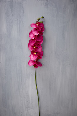 Orchid Spray Fuchsia 45in