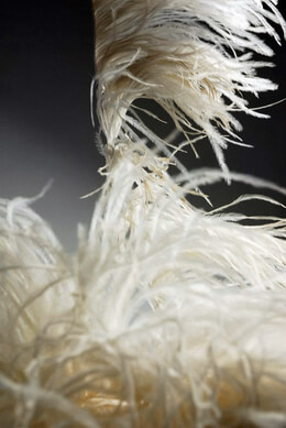 "Ostrich Feathers Trim Off White 7"" long x 5.5 yds"