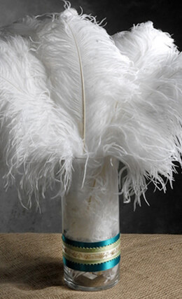 12 White Ostrich Feathers  9-13in