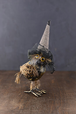 Owl with Hat 10in