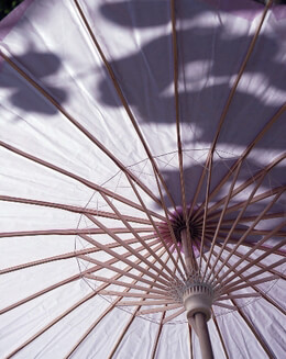 Parasol Lavender 32in