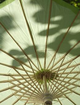 "Parasols 32"" Lime Green Scalloped Paper & Bamboo Parasol Umbrellas"
