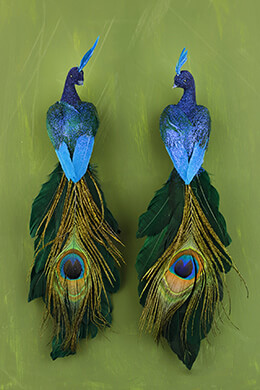 "Set of Two Feathered 11"" Peacocks"