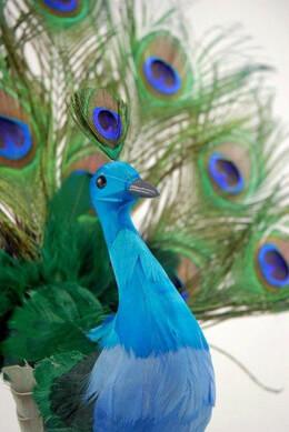 """Peacock Open Fan Artificial 16"""" x 18"""""""