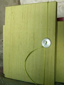 Pear Green Dupioni Silk Accordion Photo Book