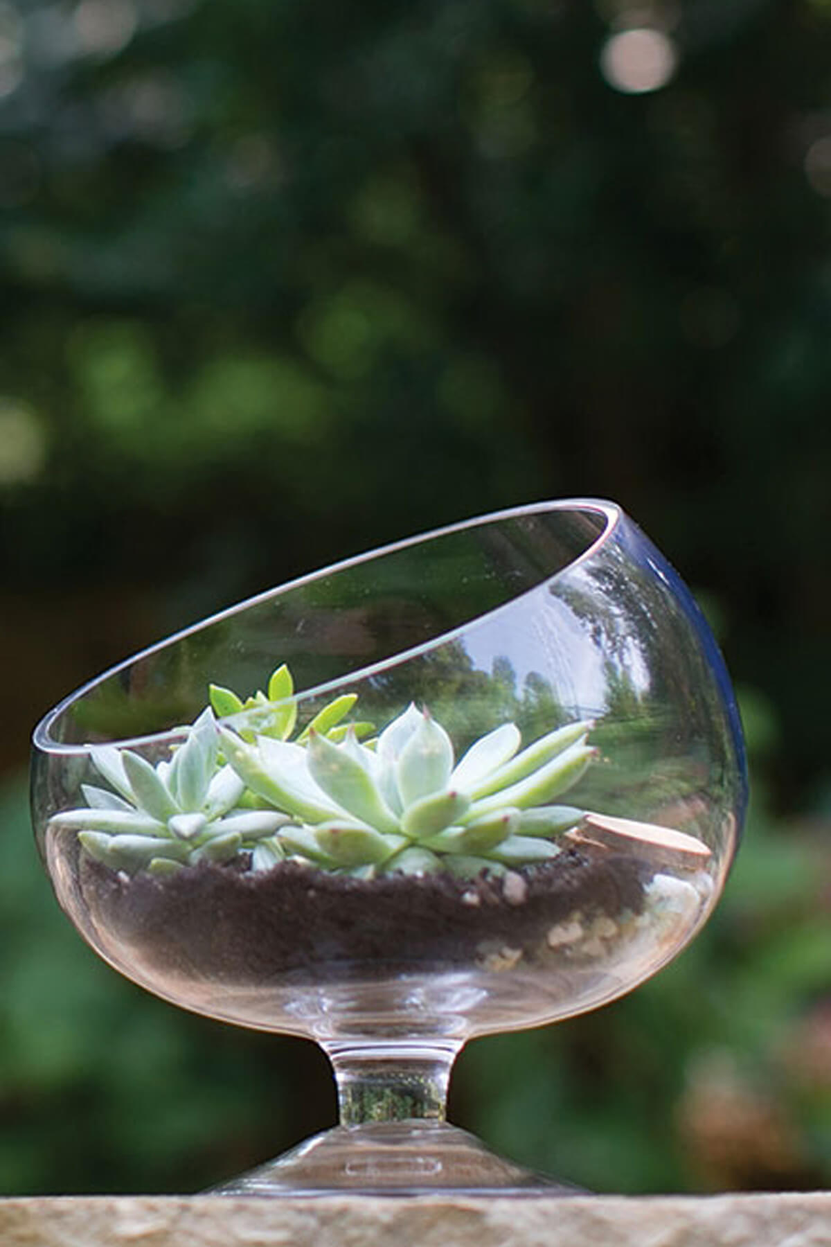 """Pedestal Bias Bowl 7"""" Glass"""