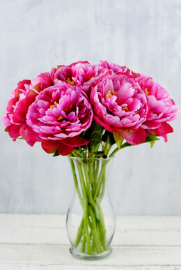 12 Perfect Pink Peony Flowers 13""