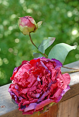 Peony Paper Spray Burgundy 24in