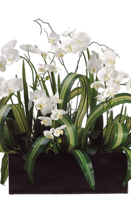 "Extra Large 40""  White Orchid Silk Flower Arrangement"