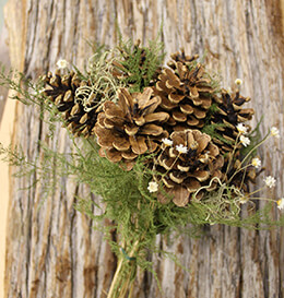 Pine Cone Bouquet 18in